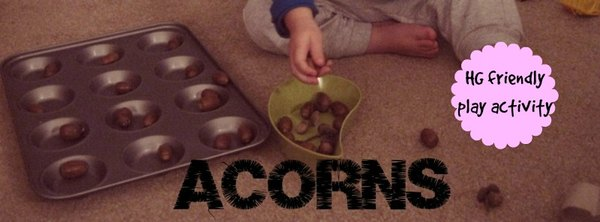 Adventures of Adam acorns