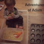 Adventures of Adam Alphablock Rainbow Rice Hunt