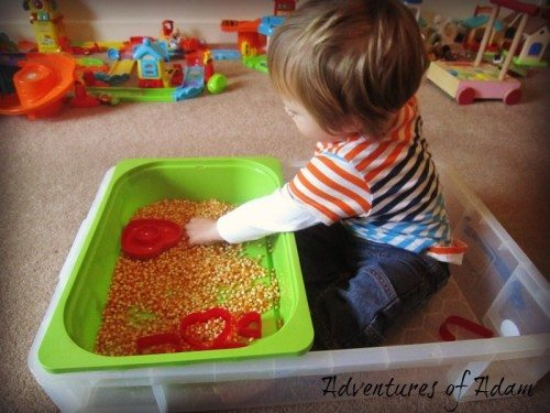 Adventures of Adam Valentines Day sensory bin