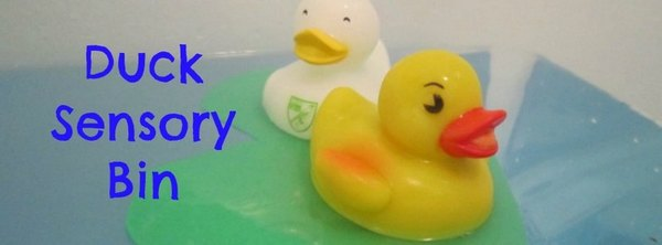 Adventures of Adam duck sensory bin