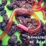 Adventures of Adam edible jelly worms