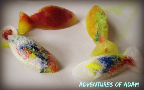 Adventures of Adam frozen vinegar rainbow fish