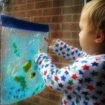 Adventures of Adam Fish Tank Sensory Bag