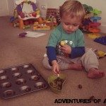 Adventures of Adam playing with acorns