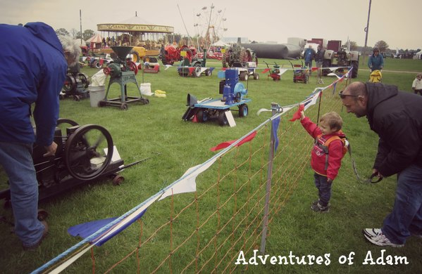Adventures of Adam Game and Country Fair