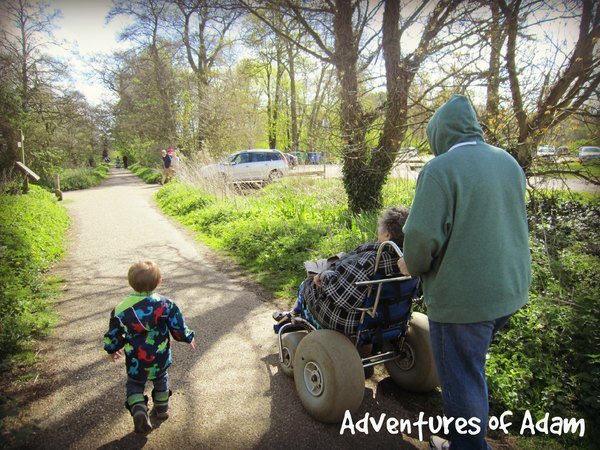 Adventures of Adam Whitlingham Country park wheelchair