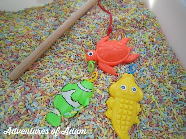 Adventures of Adam Rainbow Fish Rice Fishing