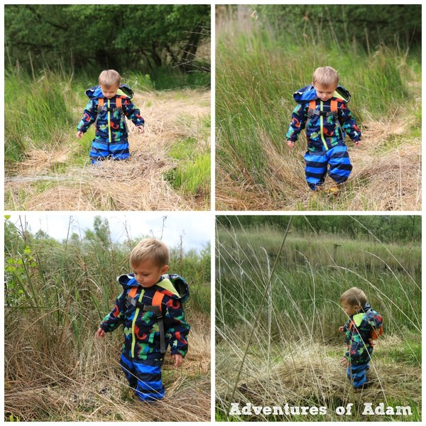 Adventures of Adam toddler nature assault course