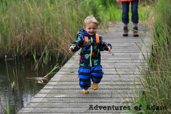 Adventures of Adam nature toddler