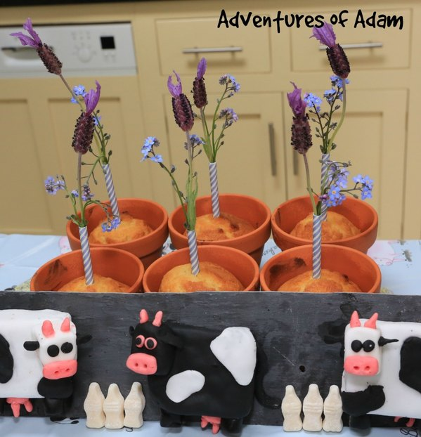 Adventures of Adam flower pot cup cakes