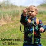 Adventures of Adam toddler exploring nature