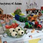 Adventures of Adam farmyard theme party food table