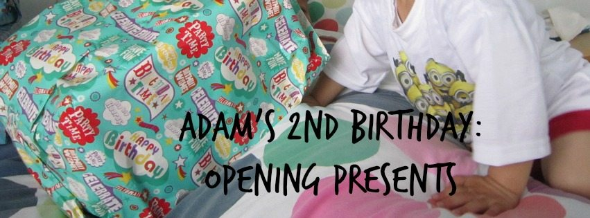 Adventures of Adam second birthday