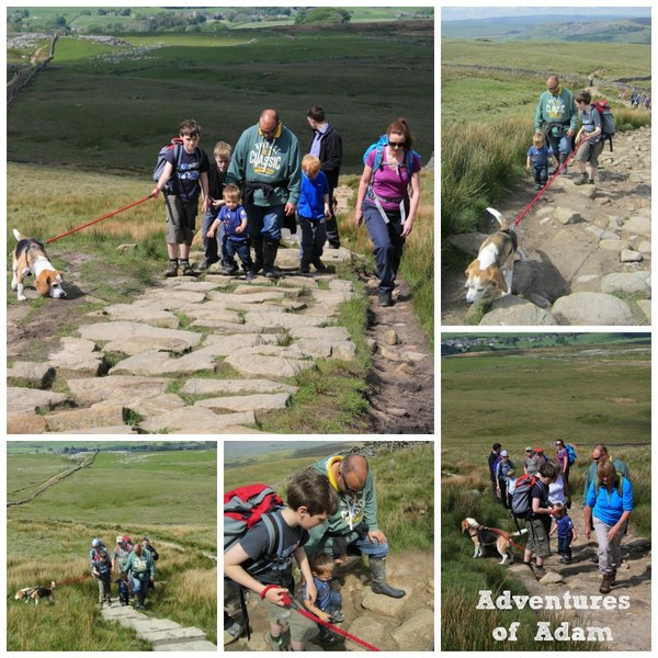 Adventures of Adam friends up Pen-y-ghent