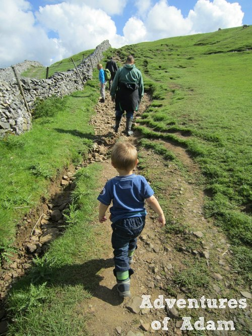 Adventures of Adam toddler walking Pen-y-ghent