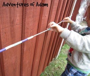 Adventures of Adam toddler counting