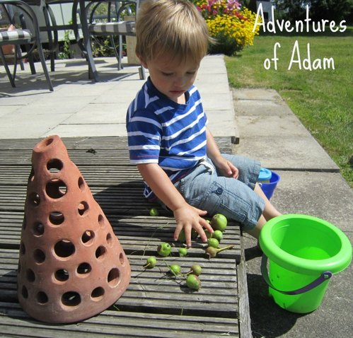 Adventures of Adam toddler fine motor skills with objects in garden