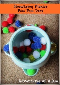 Adventures of Adam Strawberry Planter Pom Pom Drop