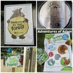 Adventures of Adam Thetford Forest Gruffalo trail