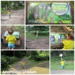 Adventures of Adam Gruffalo trail