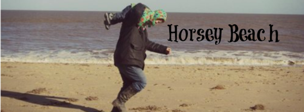 Adventures of Adam Horsey Beach