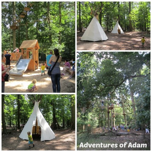 Adventures of Adam Thetford Forest