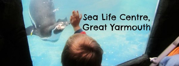 Adventures of Adam Sea life centre Great Yarmouth