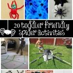 Adventures of Adam 20 toddler friendly spider activities