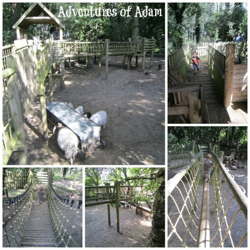Adventure of Adam around Norfolk