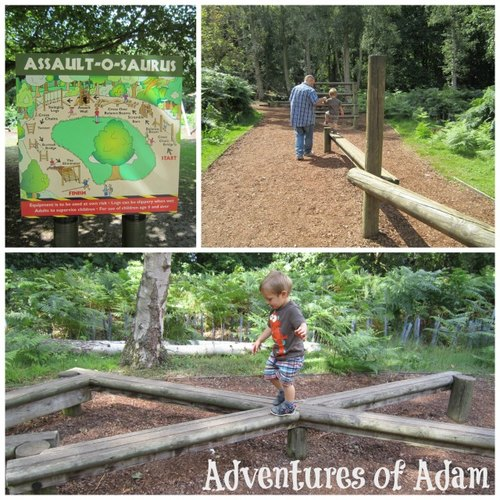 Adventures of Adam child assault course