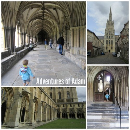 Adventures of Adam toddler days out in Norfolk