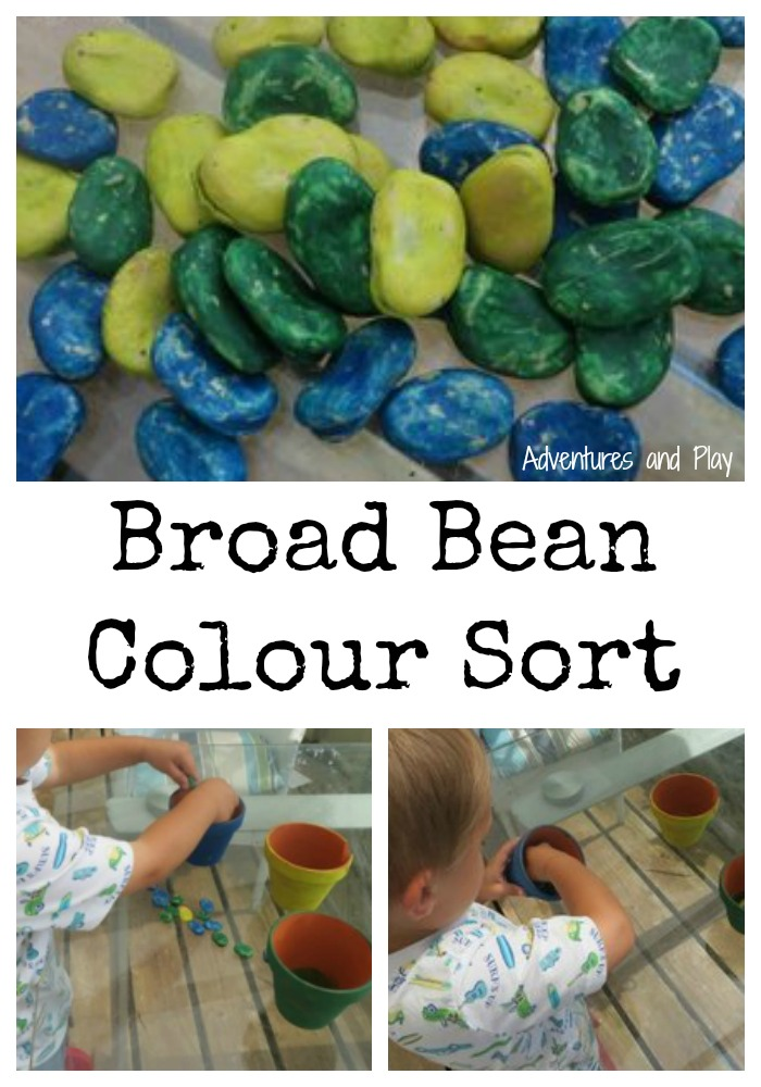 Broad Bean Colour Sort