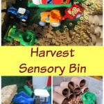 Adventures of Adam Harvest Sensory Bin