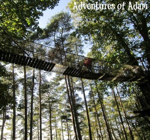 Adventures of Adam Bewilderwood Broken Bridge