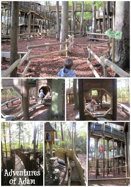 Adventures of Adam Bewilderwood Sky Maze
