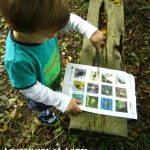 Adventures of Adam using the Nature Detectives Woodland Trust sheet