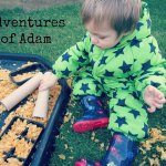 Adventures of Adam Cornflake Sensory Bin