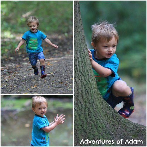 Adventures of Adam running in Bacton woods