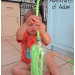 Adventures of Adam pipe cleaner posting