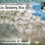 Adventures of Adam Penguin sensory bin