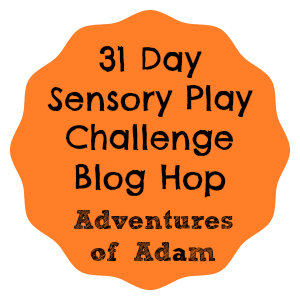 Adventures of Adam Sensory Play Challenge Blog Hop