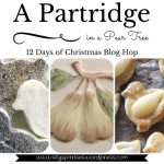 Partridge In A Pear Tree by Silly Sparkles