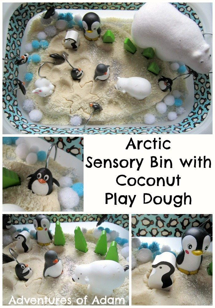 Adventures of Adam Arctic sensory bin with coconut play dough