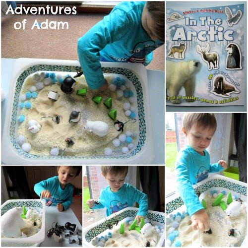 Adventures of Adam Arctic toddler sensory bin