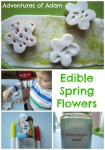 Adventures of Adam Edible Spring Flowers Adventures of Adam