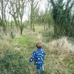 Adventures of Adam exploring Nana's wood