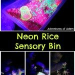 Adventures of Adam Neon Rice Sensory Bin