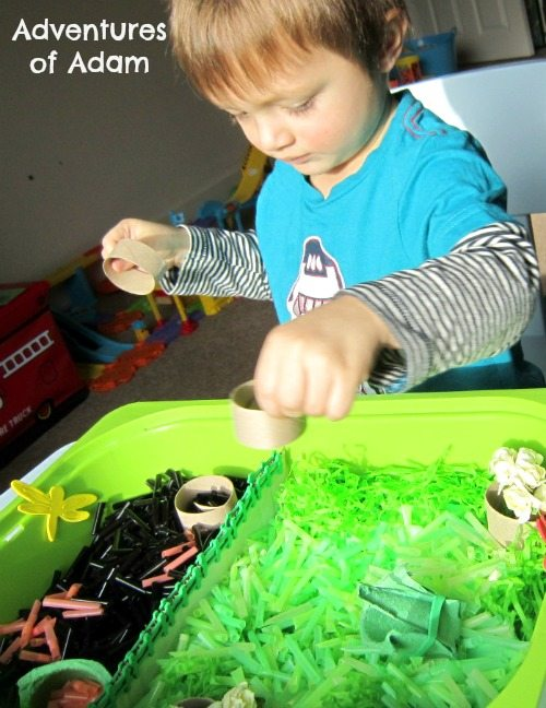 Adventures of Adam Sensory bin made from straws