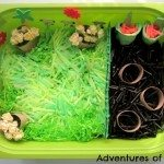 Adventures of Adam Straw Spring Sensory Bin