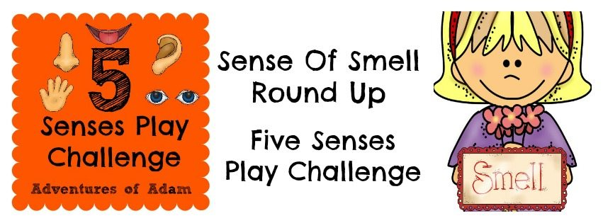 Sense Of Smell Round Up – Five Senses Play Challenge